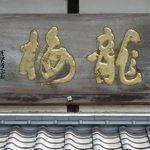 龍梅【りゅうばい】~地元の豊かな恵みを生かした酒造り~藤居酒造株式会社