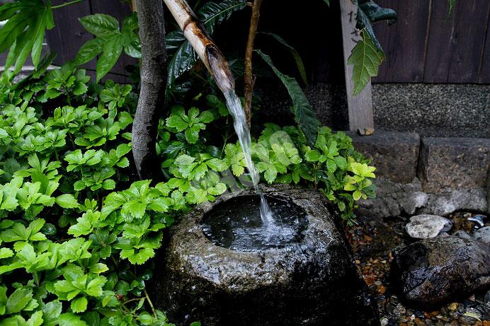 軟水と硬水による日本酒の味わいの違い