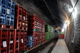 トンネル地下貯蔵庫